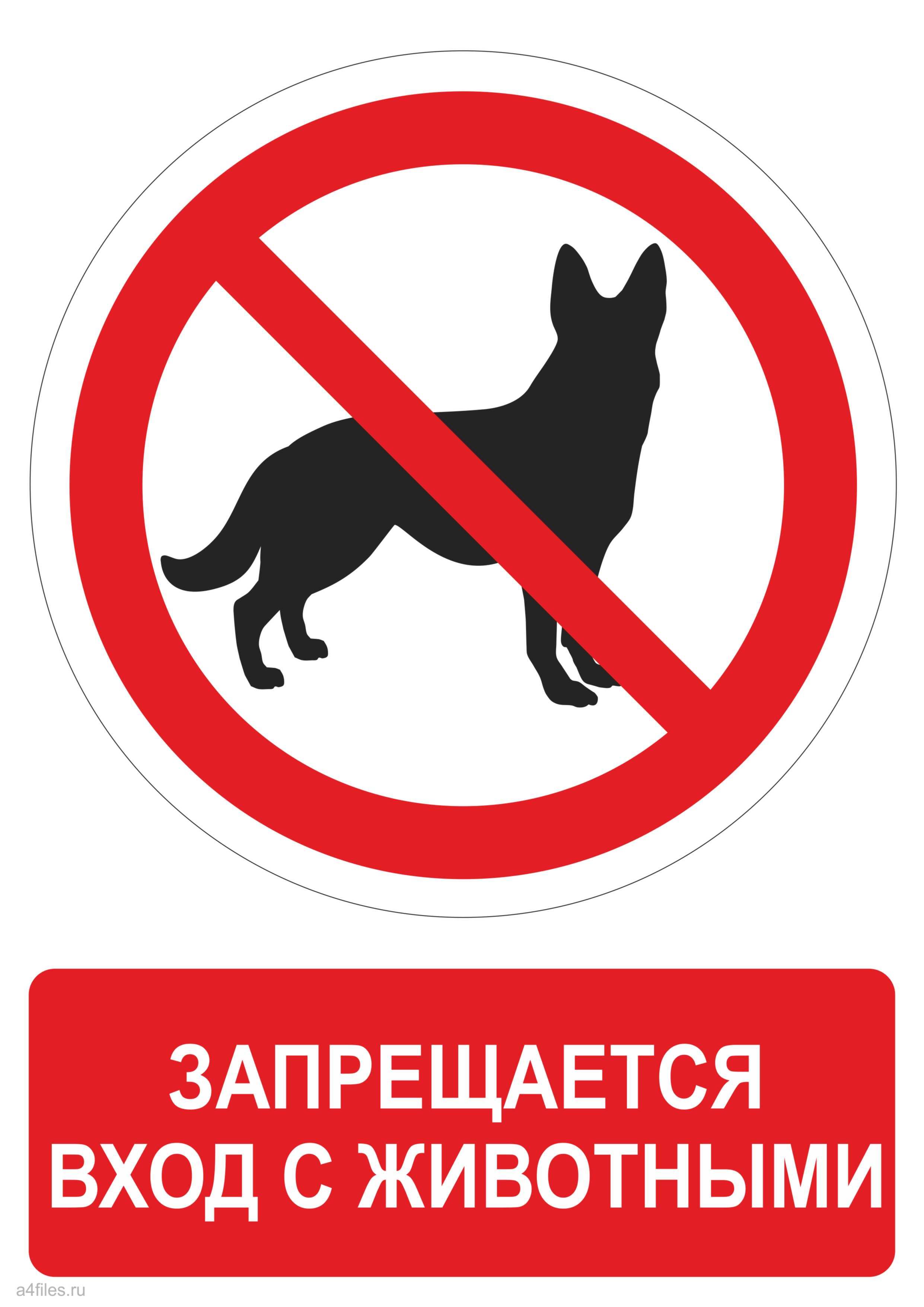 Картинка с животными вход запрещен