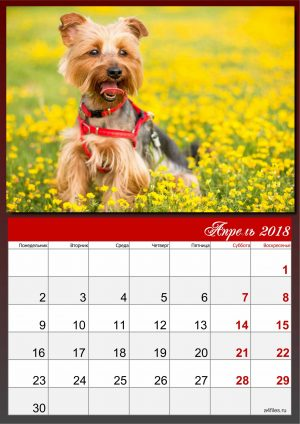 Календарь 2018 на апрель