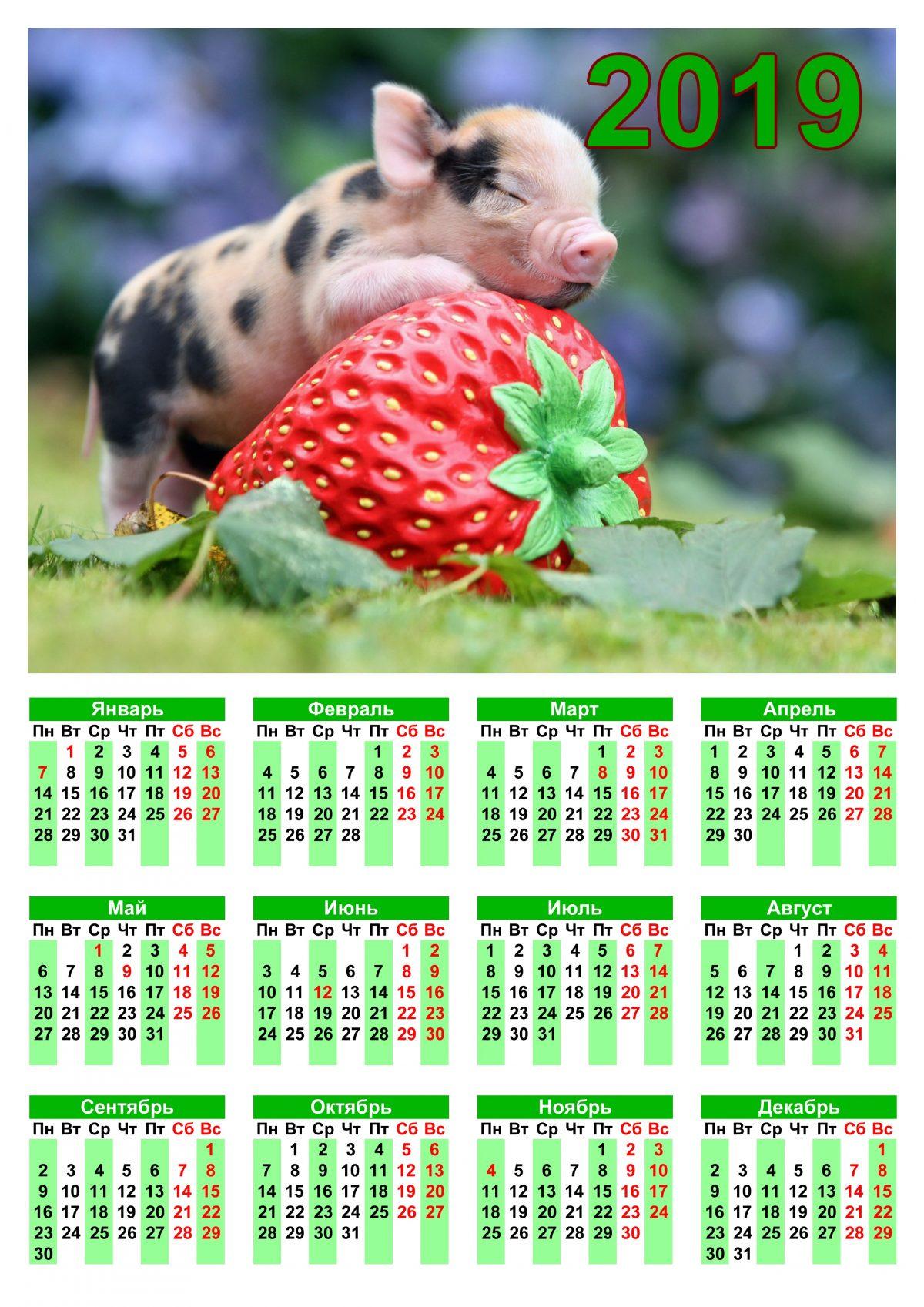 """Календарь наспенный """"Свинка с клубникой"""" в формате А4"""