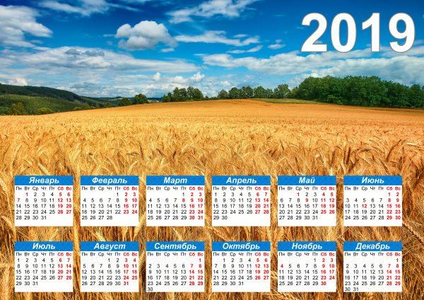 Календарь поле на 2019 год распечатать
