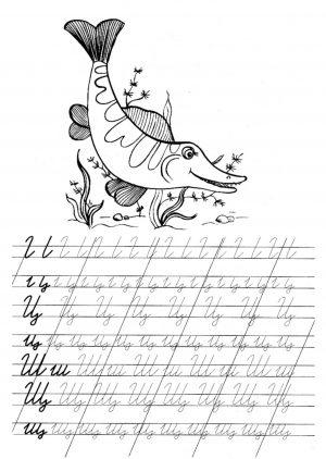"""Прописи букв """"Ц, Ш. Щ"""" для 1 класса распечатать"""