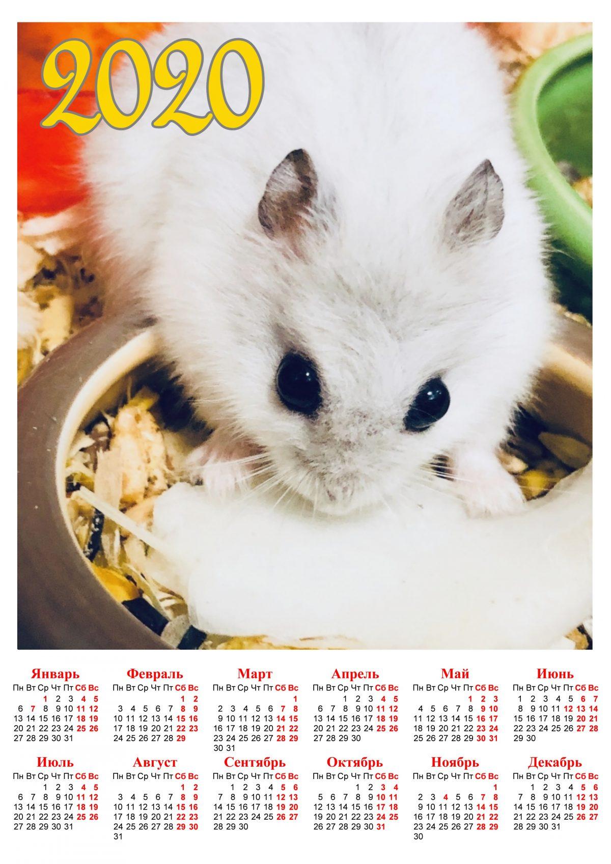 Календарь с крысой скачать в формате А4